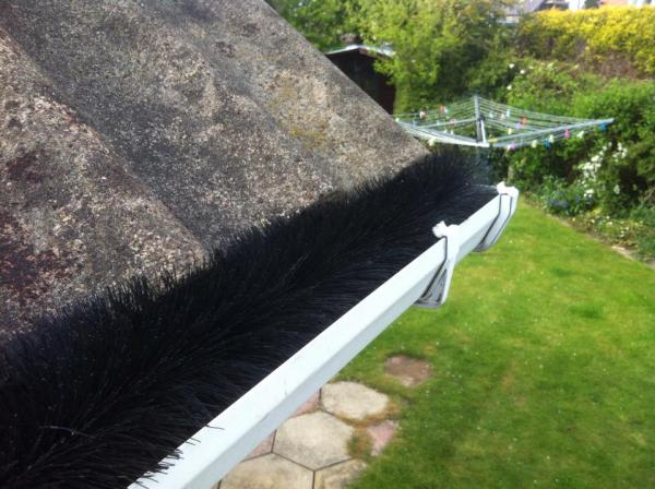 clean guttering with hedgehog gutter guard